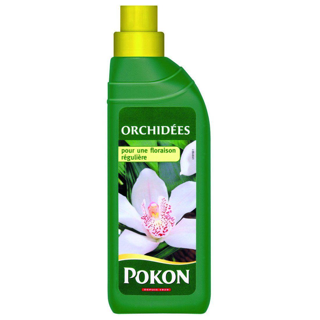 orchidee engrais